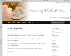 Serenity Nails and Spa website and branding